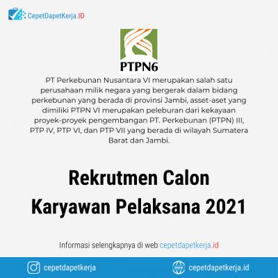 Loker Rekrutmen Calon Karyawan Pelaksana 2021 – PTPN VI